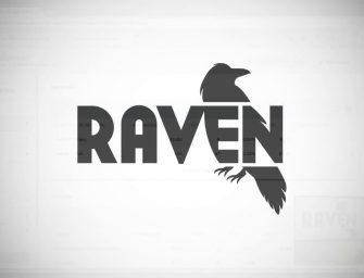 Cum se utilizeaza Raven tools?