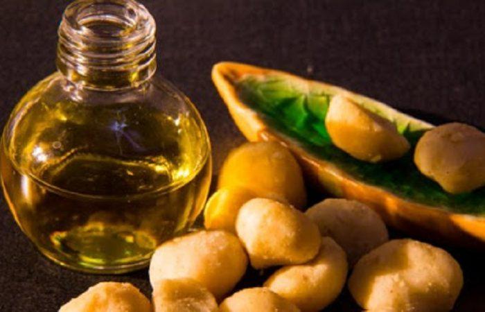 Ce este uleiul de Macadamia?